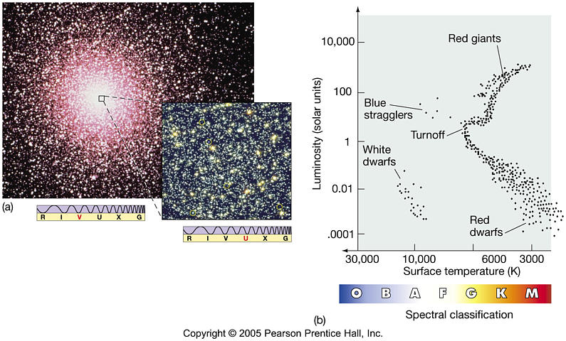 an essay on globular evolution In pseudomonas aeruginosa: an essay on diversity, evolution, and function   it is worth noting that the globular domain found in the xcpx bulk structure may.