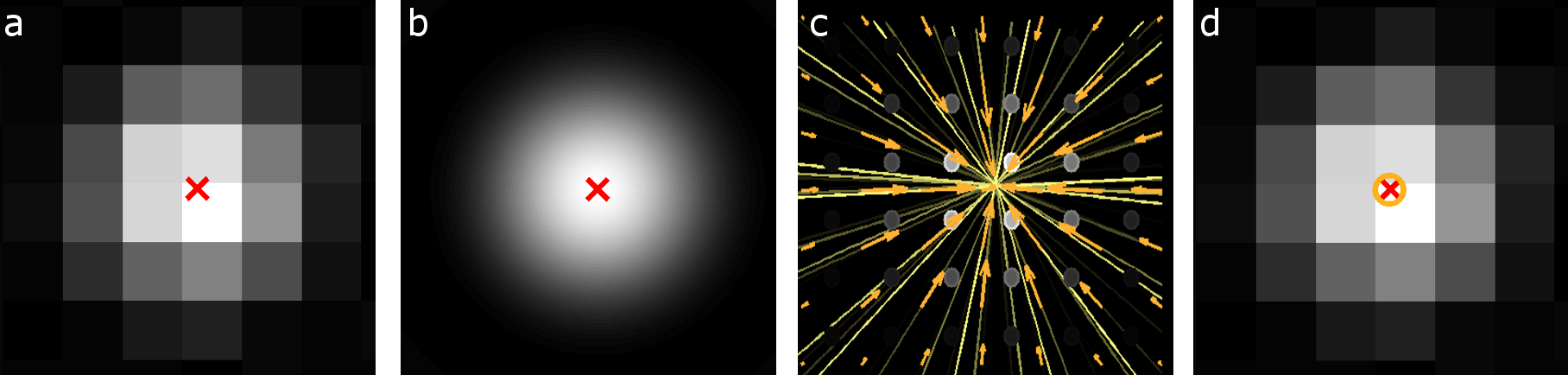 ParthasarathyLab: Particle Tracking